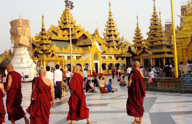 A-monk-reads-at-Shwedagon-pagoda