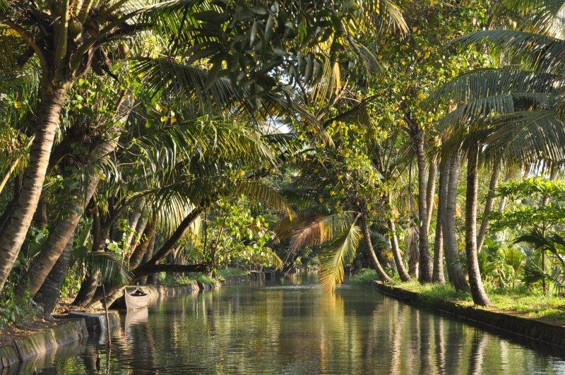kerala-backwaters-houseboat-tours-4